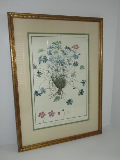 "Nice Engraving - ""Geranium"" - Matted & Framed   22 1/2"" x 16 1/2"""