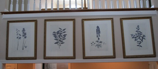 4 Floral Framed Prints by Wm.Dumkarten- London Published