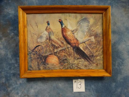 Framed Ring-neck Pheasants Print