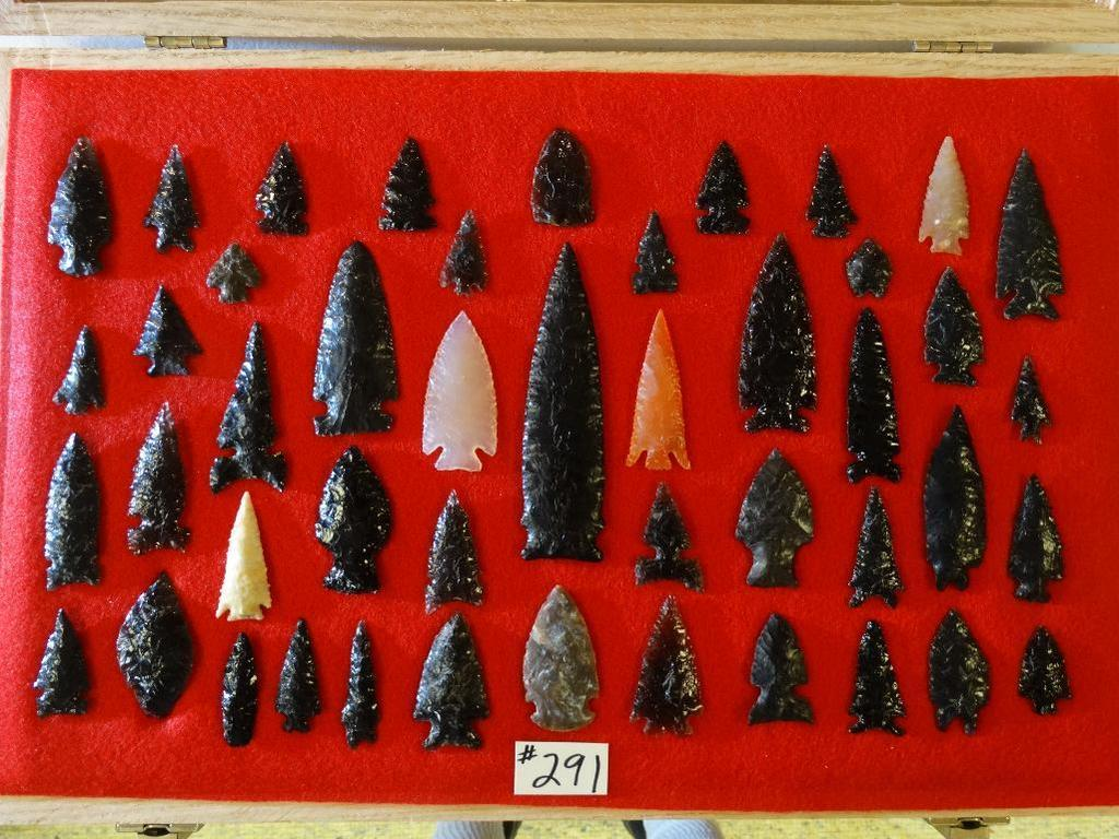 Winter Taxidermy, Arrowheads, Fossils & Gemstones
