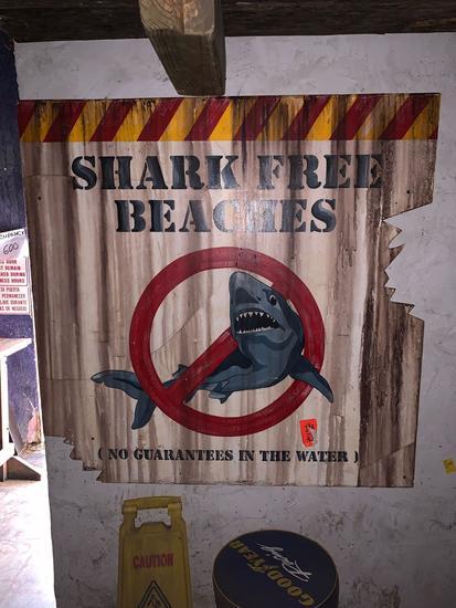 Shark Free Beaches Sign