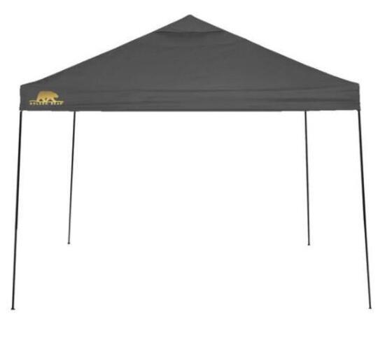 Golden Bear Coronado 10'x10' Straight-Leg Canopy