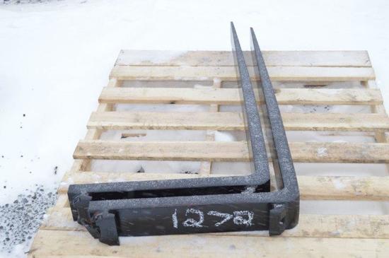 Set of pallet forks