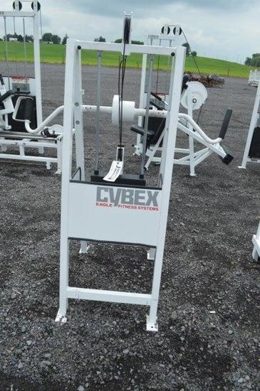 Cybex Eagle Fitness System wrist & forearm exercise machine