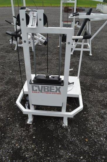 Cybex Eagle Fitness System Hip/knee rotation exercise machine