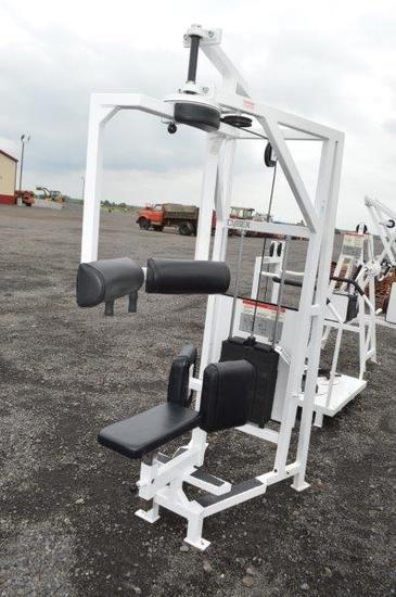 Cybex Eagle Fitness System Rotary torso machine