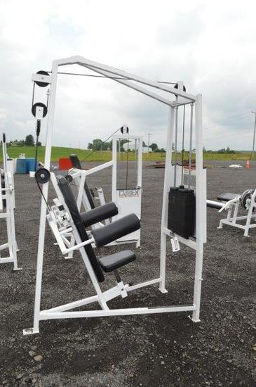 Cybex Eagle Fitness System Lateral Raise Machine