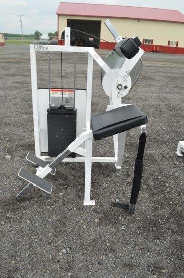 Cybex Eagle Fitness System shoulder back extension machine