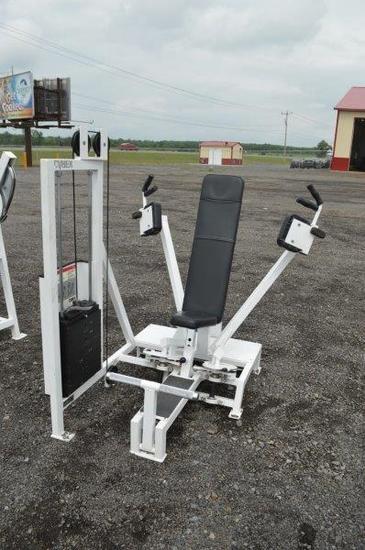 Cybex Eagle Fitness System fly machine