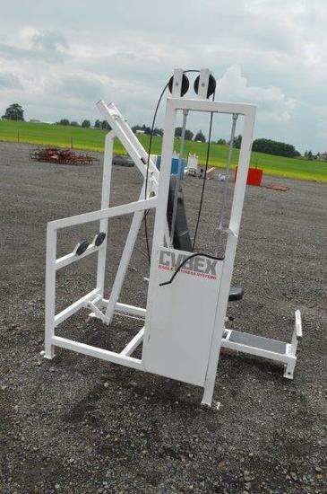 Cybex Eagle Fitness System Incline Press
