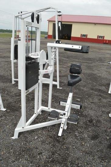 Cybex Eagle Fitness System abdomial exercise machine