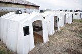 Lot of 10- Caftel & Poly square calf hutches (x10)