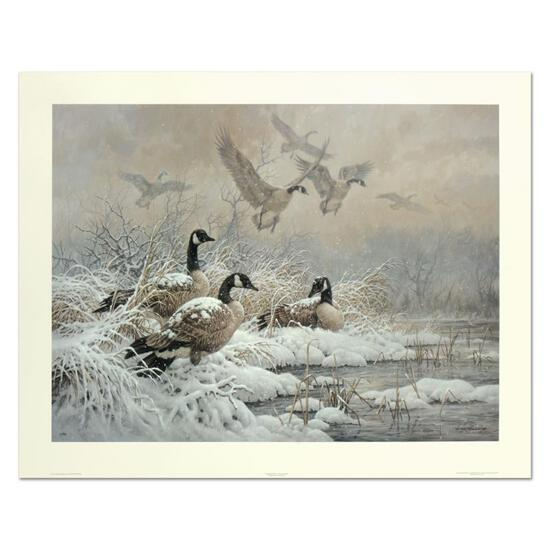 Winter Retreat - Canada Geese by Fanning (1938-2014)