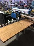 16176- Omaga radial arm saw, hydraulic