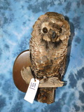 FB REPRODUCTION OWL -MADE W/ REAL (NOT OWL) FEATHERS