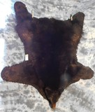 BLK BEAR RUG W/HEAD