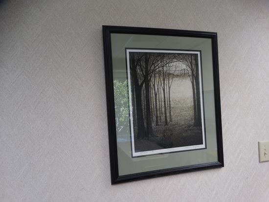 "Framed Print ""SHADOW"""