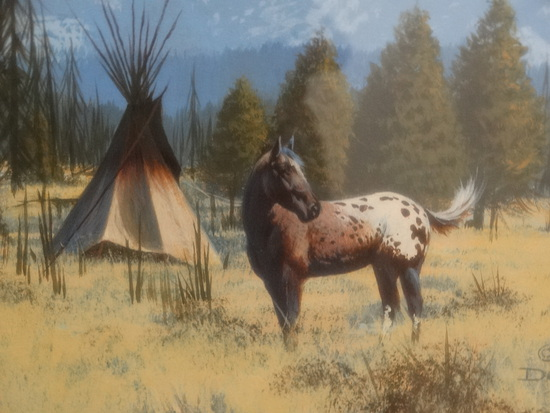 "Original Oil ""Appaloosa  Horse"""