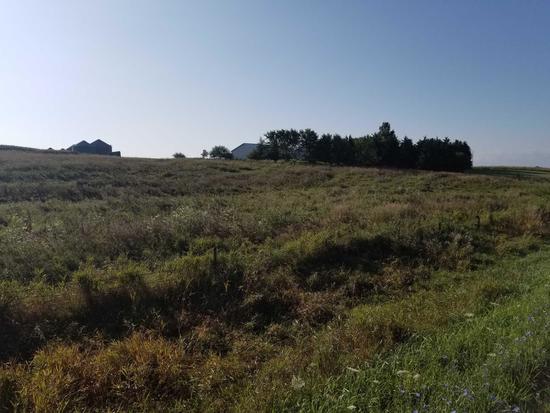 SOUTHWEST IOWA FARM LAND 158 ACRES MOL