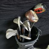 Bag with Clubs