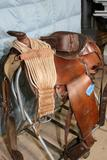 Brown Horse working Saddle with saddle rack