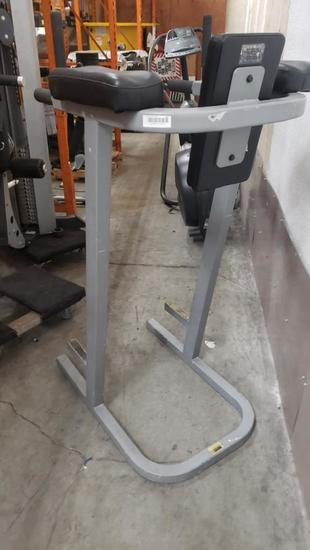 Hoist Dip Crunch Machine 5ft Tall