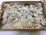 Large Lot of Quartz Crystals