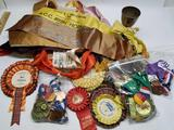 Bin Full of 1980s Ribbons Medals Sashes Dancing