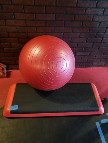 Step Up Plank Spri Exercise Ball 2 Units