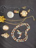 jewelry lot Necklaces, brooch, pendant, Jade fish