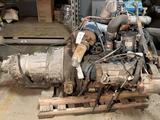 International T444E 7.3L Diesel Engine