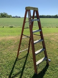 Werner 6 Ft Ladder