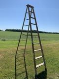 Blue Ribbon 10 Ft Ladder