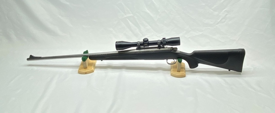 Remington Model 700 375 HH Mag with Nikon Buckmasters Scope