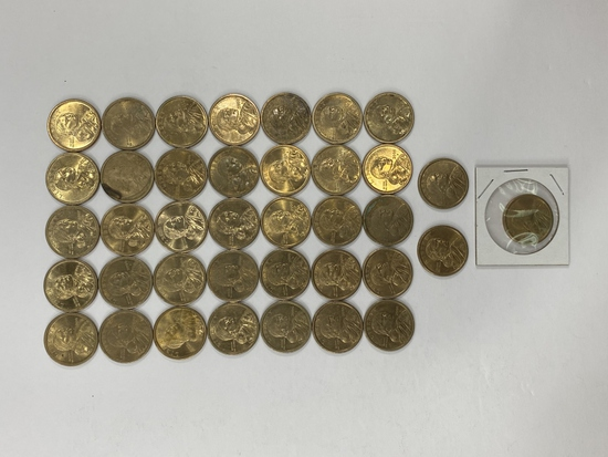(38) Sacagawea Dollar Coins
