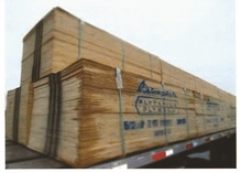 Insurance Claim: 1,080 Sheets of Plywood