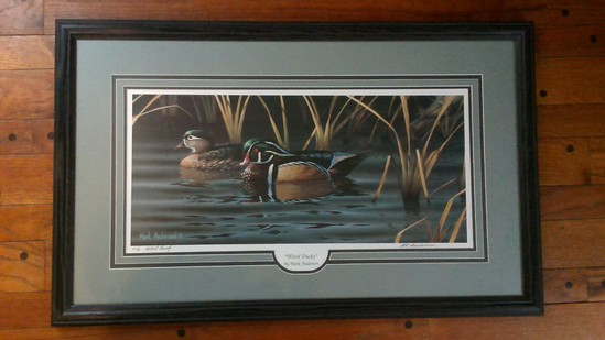 Wood Ducks by Mark Anderson