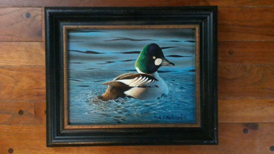 Wood Duck oil painting by Mark Anderson