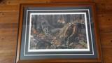 Bruce Miller wildlife print