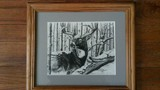 Whitetail Drawing by Donald Williams
