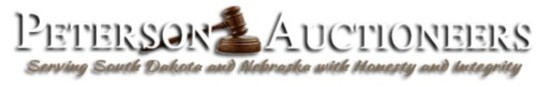 Information on Online Auction