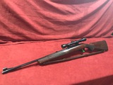 Winchester Model 100 .243