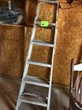 5ft Ladder