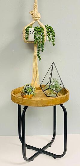 Let it Grow! Planter Stand & Terrarium Package