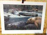 Print The Bears of McNeil River by Ed Tussey