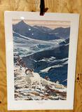 Print Majestic Heights Dall Sheep by Ed Tussey