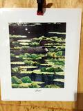 Print Loons By Ed Tussey