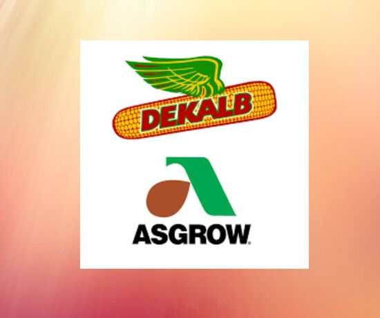 Certificate for 20 bags of Asgrow Xtend Soybeans for 2021 Spring.