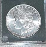 US Morgan Silver Dollar, Key Date 1886 from Private Collector