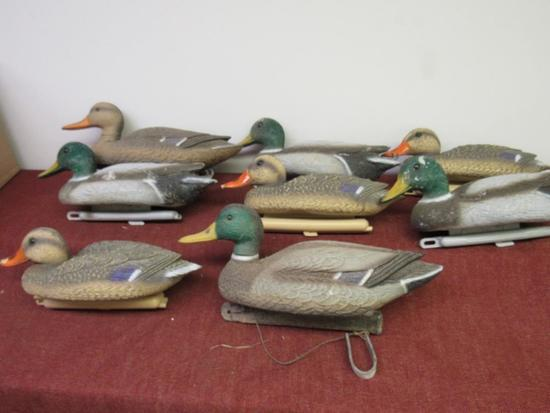 8 Mallard Duck Decoys, Previously used